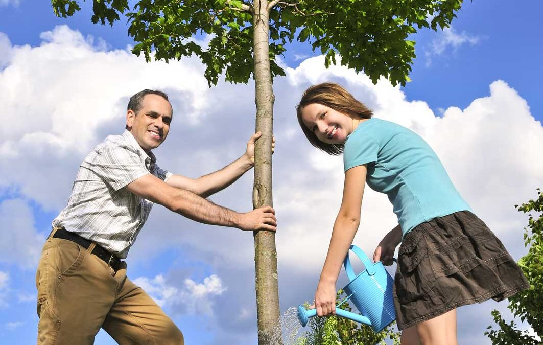 5 Fast-Growing Trees to Plant in Your Yard